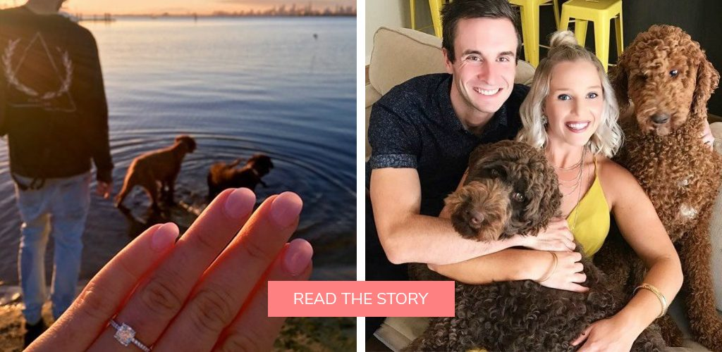pet dog proposals beach engagement ring